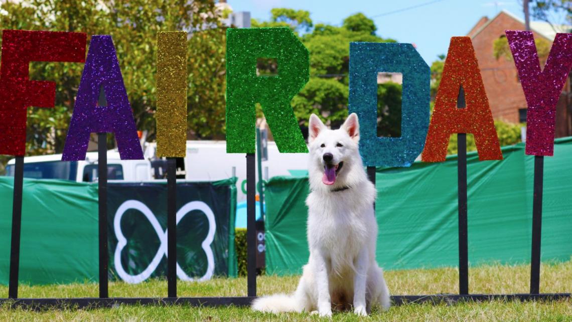 A snapshot of Fair Day 2015 (PHOTO: Ann-Marie Calilhanna; Star Observer)
