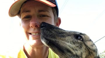 Shelley Tinworth greyhounds rescue
