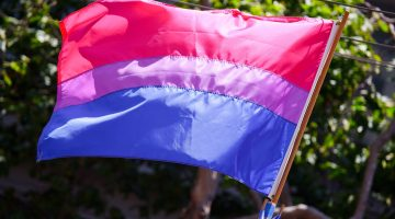 Bisexual pride flag Bi Visibility Day