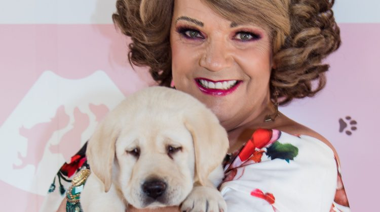 dolly diamond guide dogs victoria